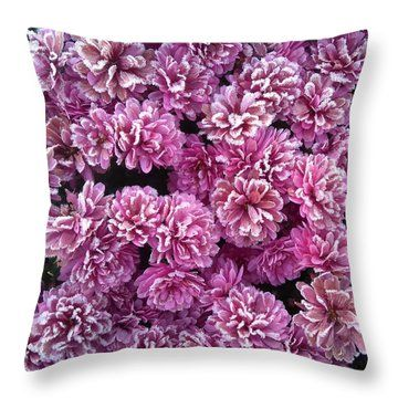 Throw Pillow featuring the photograph Icy Flowers by Johanna Hurmerinta