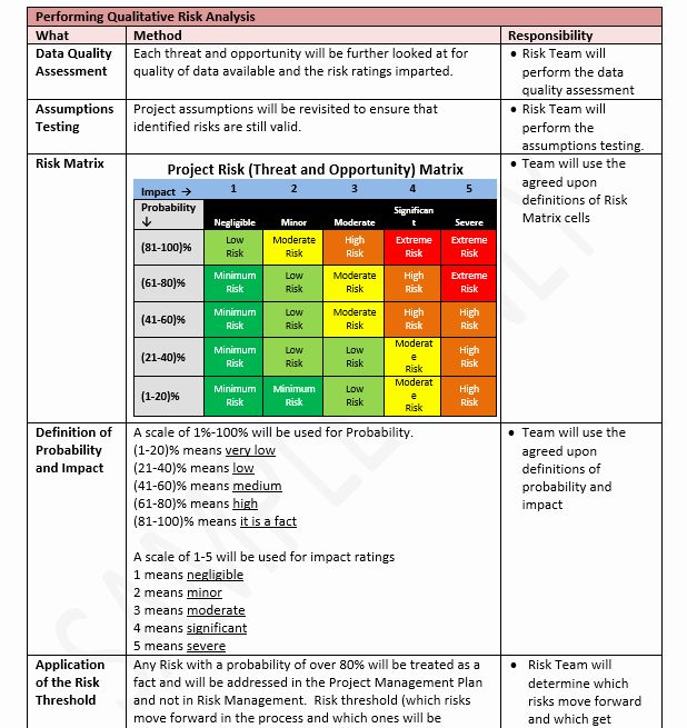 Risk Management Plan Template Doc Fresh Risk Management Plan Template Project Risk Management Risk Management Risk Analysis