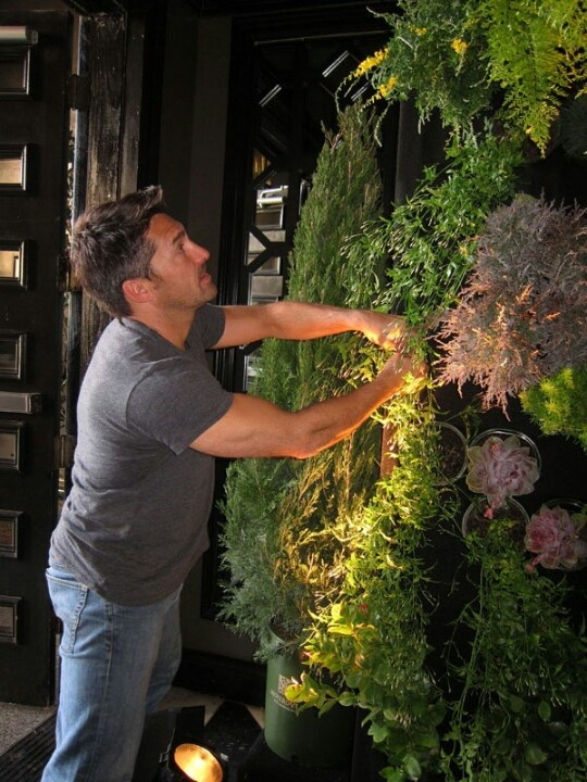 Landscape Gardener Jamie Durie Installing A Living Green Wall At Our Pre Oscar Party
