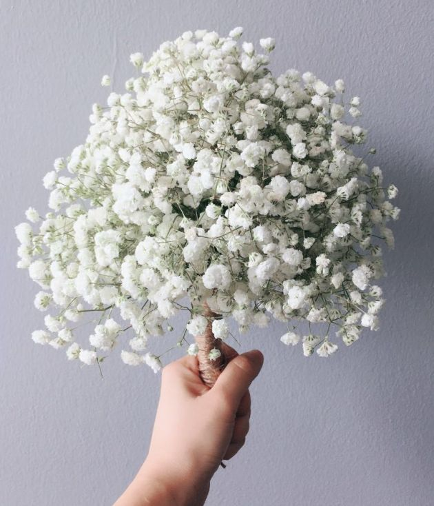 Wedding Hand Bouquet With Baby Breath Flowers Hand Bouquet Wedding Hands Gorgeous Wedding Bouquet