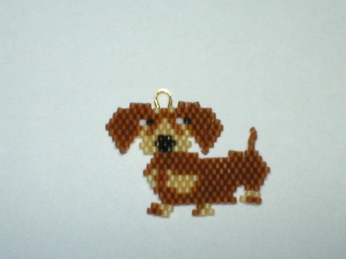 Brown Doxie