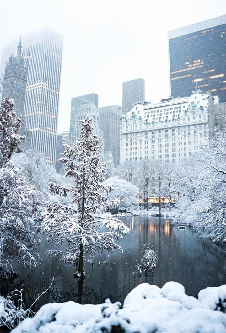 Snow covered Central Park in NYC New York City Manhattan. Central park after a winter blizzard snow storm.