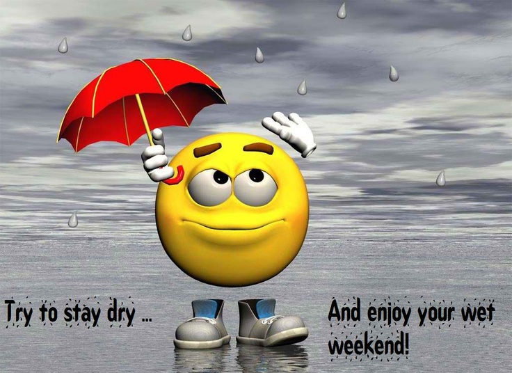 Have A Great Weekend Everyone Smiley Really Funny