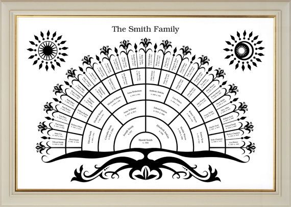 1000  ideas about blank family tree on pinterest
