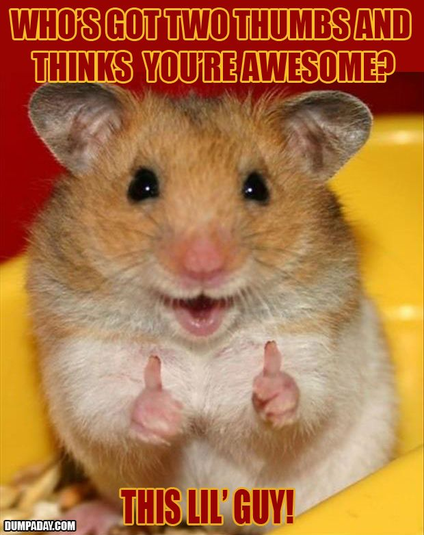 Awww! What a cute little cheer-up pic to send somebody ...