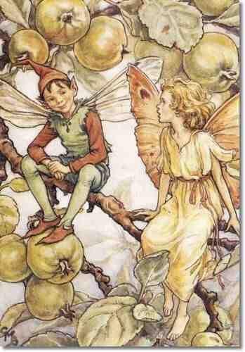 The GOOD ELF Fairy ~ Cicely Mary Barker ~