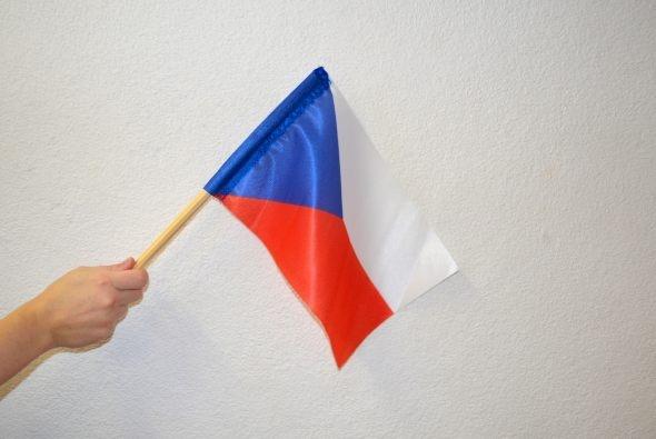 Little fans flag CR