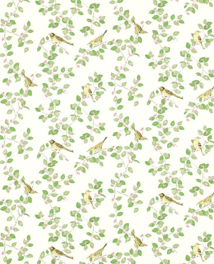 Green Kitchen Wallpaper | Aviary Garden Apple