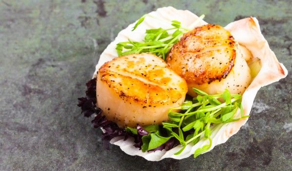 Морских гребешков можно купить в магазине как в свежем, так и в замороженном виде. Морские гребешки фри – деликатесное, но довольно простое в приготовлении блюдо.    Ингредиенты  морские гребешки700 …