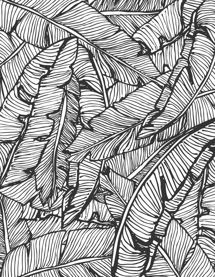 Line Drawing Jungle : Seamless pattern design with hand drawn banana leaves