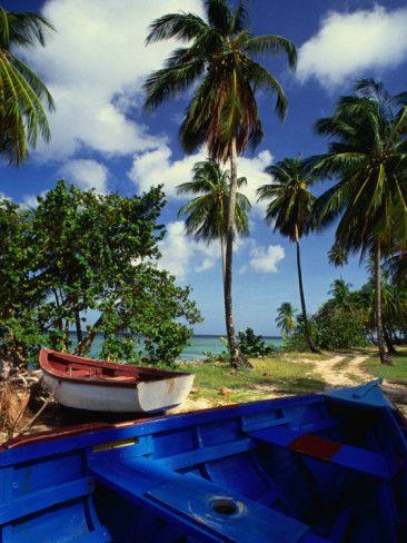 Best beaches in Tobago: Pigeon Point  #60days #tobago
