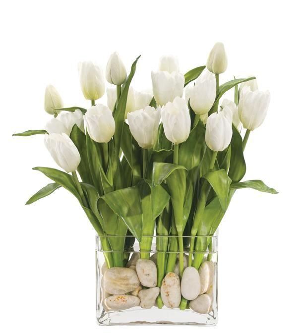Natural Decorations, Inc. - Tulip White, Glass Rectangle