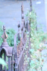 : Arbour Gates Fence Pergolas, Irons Fence, Gardens Fence, A 1Garden, Purple Fence, Fence Row, Fence G, Wrought Iron, Don T Fence