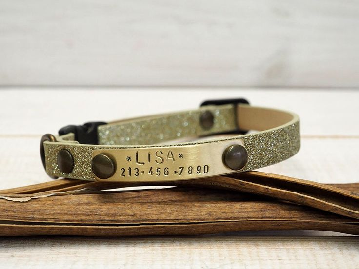 Cat Collar, Breakaway Collar, Dog Collar, Strass Webbing, Personalized Collar, Personalized Cat Collar, Cat Collar Personalized, Dog Name by VacForPets on Etsy https://www.etsy.com/listing/540416954/cat-collar-breakaway-collar-dog-collar