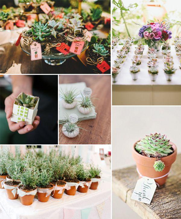 2014 trending fall wedding favors with cute plants #weddingideas #elegantweddinginvites