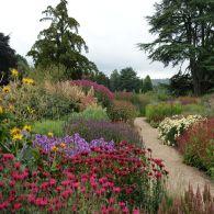 Engeland, bakermat van de eerbiedwaardige tuinkunst, waar hij voor een kleine revolutie zorgde met zijn onorthodoxe opvattingen en compromisloze werkwijze. Zo maakte hij zo'n tien jaar geleden een ontwerp voor de Wisley Gardens, een van de belangri