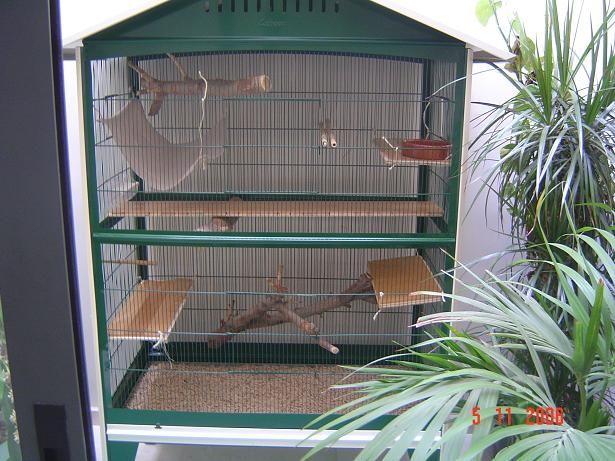 Como hacer una jaula para aves - Imagui