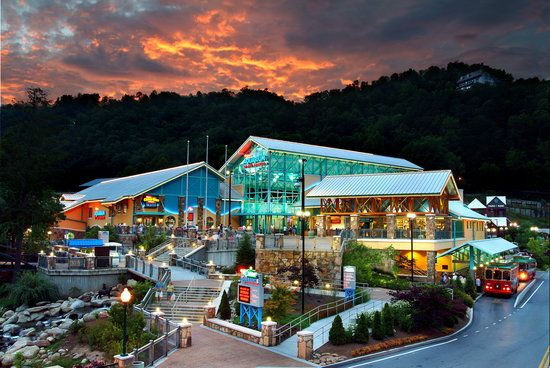 Book your tickets online for Ripley's Aquarium of the Smokies, Gatlinburg: See 6,928 reviews, articles, and 2,454 photos of Ripley's Aquarium of the Smokies, ranked No.3 on TripAdvisor among 101 attractions in Gatlinburg.