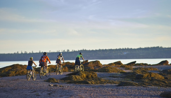 biking on the Sea floor in the Bay of Fundy