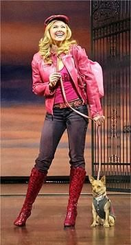 Legally Blonde Broadway Show | Legally Blonde's Next Elle Woods to Be Cast Via MTV Reality Series