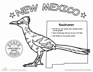 new mexico state bird new mexico science worksheets and worksheets. Black Bedroom Furniture Sets. Home Design Ideas