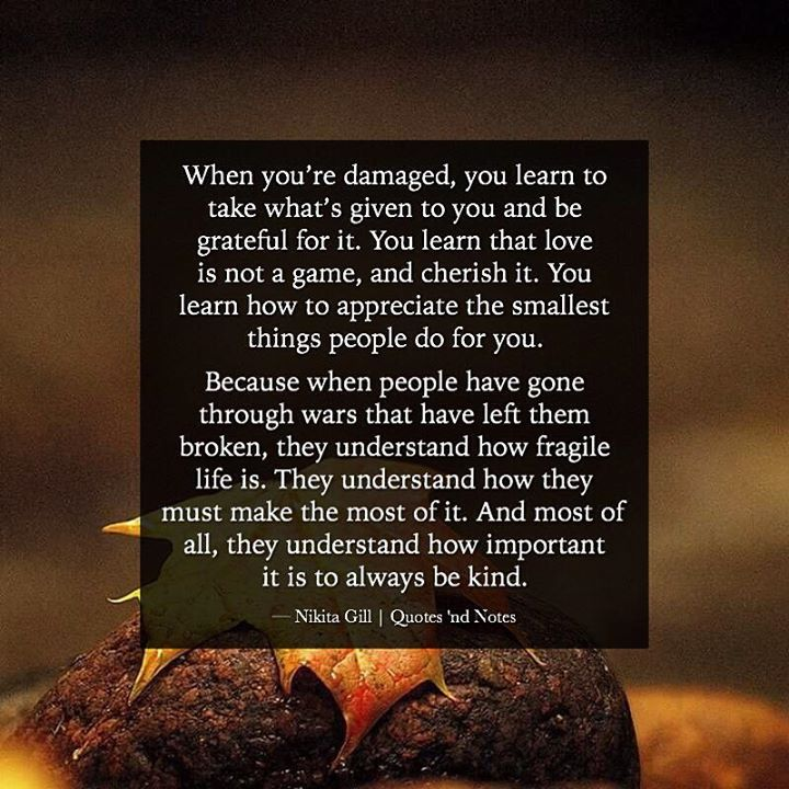 When you're damaged, you learn to take what's given to you and be grateful for it. You learn that love is not a game, and cherish it. You learn how to appreciate the smallest things people do for you. Because when people have gone through wars that...