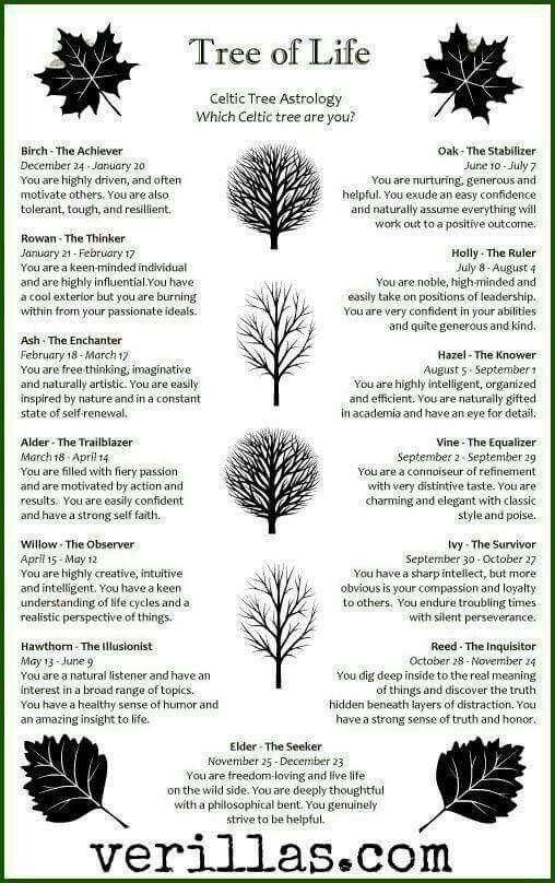 Celtic Astreelogy