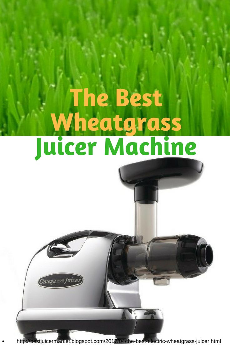 Omega j8006 nutrition center commercial masticating juicer - The Best Wheatgrass Juicers To Get The Most Out Of Your Money The Masticating Juicers