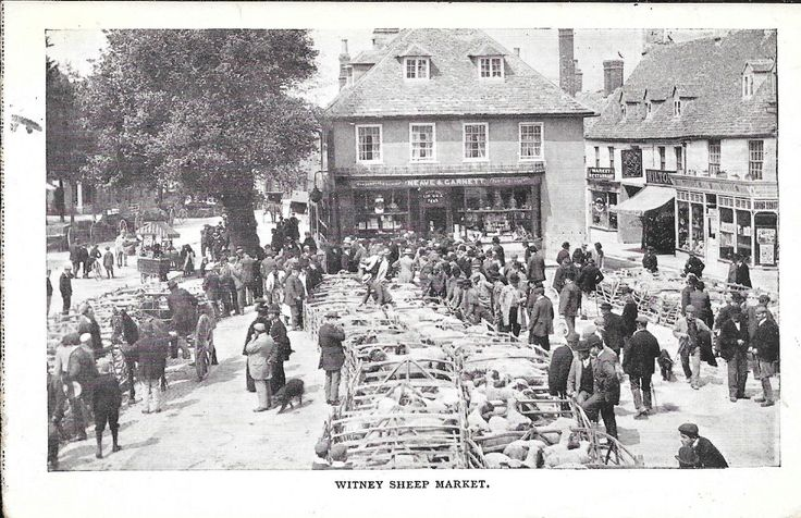 Postcard of the sheep market at Witney, Oxfordshire | eBay