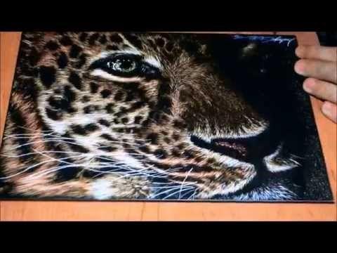 Leopard Scratchboard Speed Drawing - YouTube