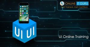 Get To Know About UI Online Course | UI, The UI user interface is everything designed into an information device with which a user (pers...