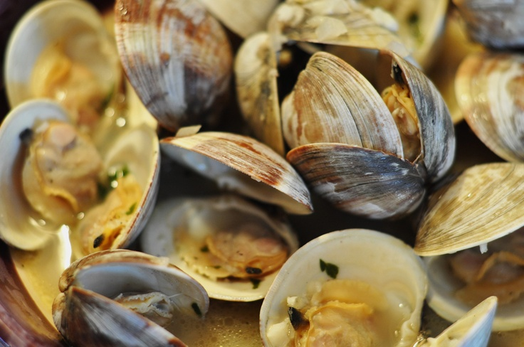 Google Image Result for http://www.ilovebluesea.com/ilbs_wp_blog/wp-content/uploads/2012/02/clams.jpg
