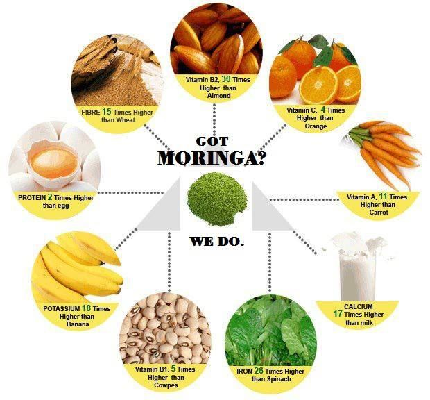 Weight Loss Moringa Tree: 74 Best Images About Drink Life In:) On Pinterest