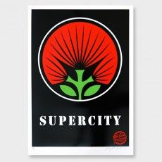Supercity Screen Print by Weston Frizzell