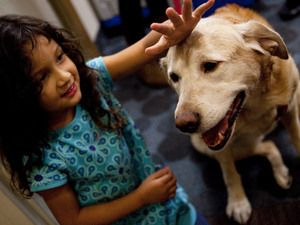 How dogs help people live longer and better lives. And how we help them, too.