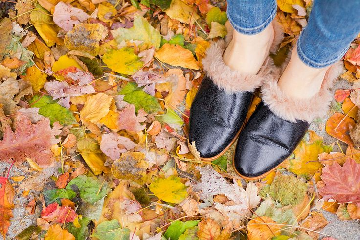 fall called