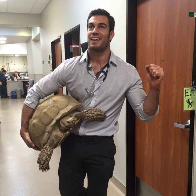 California-based vet Dr. Evan Antin, former model and one of People's sexiest men of 2014