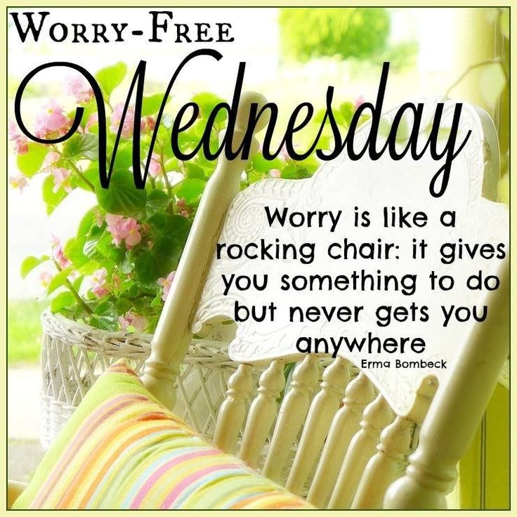 Worry Free Wednesday good morning wednesday hump day