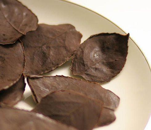 shokoladnye-listya-svoimi-rukami-dekoking-com-ru-1
