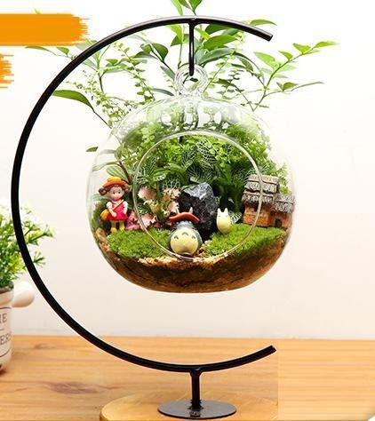 Plantes en bocal : DIY pour un terrarium de plantes d'intérieur !