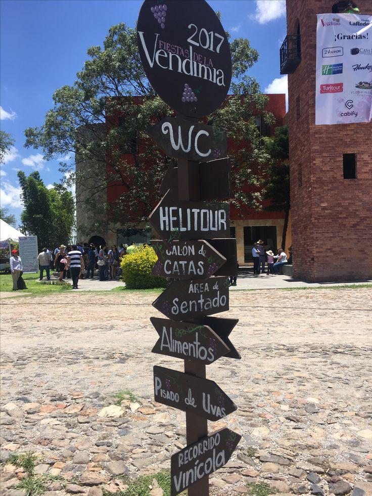 La Vendimia en Viñedos La Redonda, Querétaro,Méx