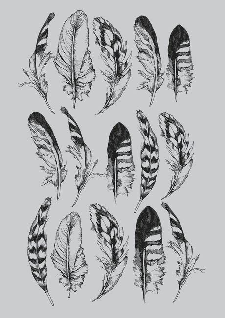 Topshop feather print