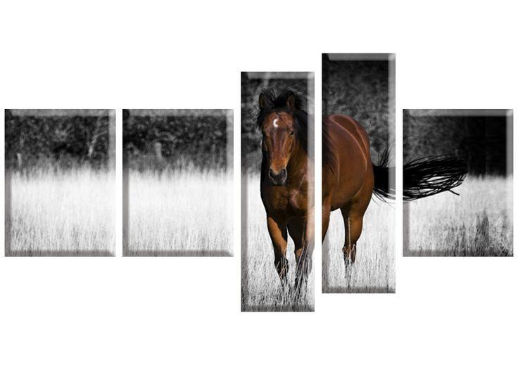 Tablou Horse 1492 Dimensiune: 3x 30x40 cm + 2x 20x65 cm Total: 130x70 cm