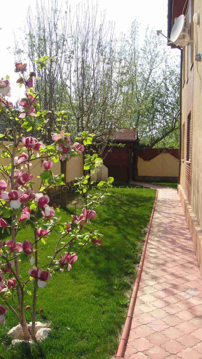 Magnolias for September