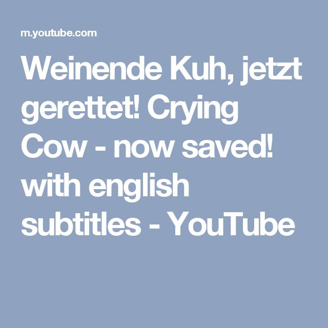 Weinende Kuh, jetzt gerettet! Crying Cow - now saved! with english subtitles - YouTube
