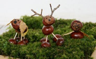 cute chestnut animals