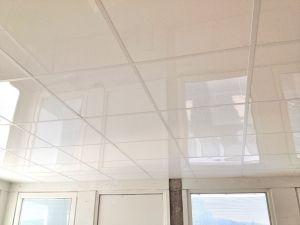 Dalle de faux Plafond Suspendu Alimentaire - Mise aux normes plafonds