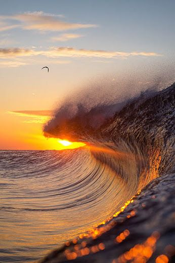 #AmazingShots #Surf #Sunset