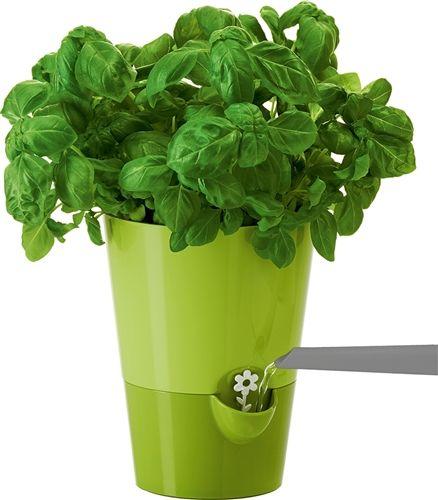 "Smart Planter, green, 6.5"" H"
