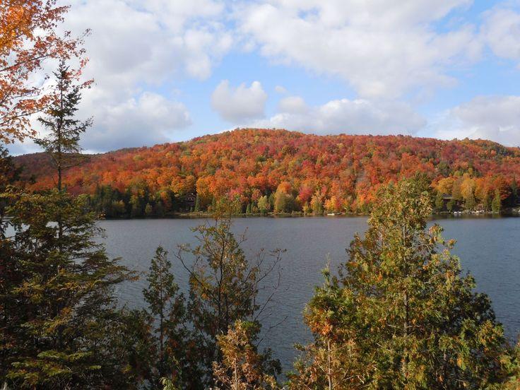 Vue sur le lac en automne - View on the lake in autumn